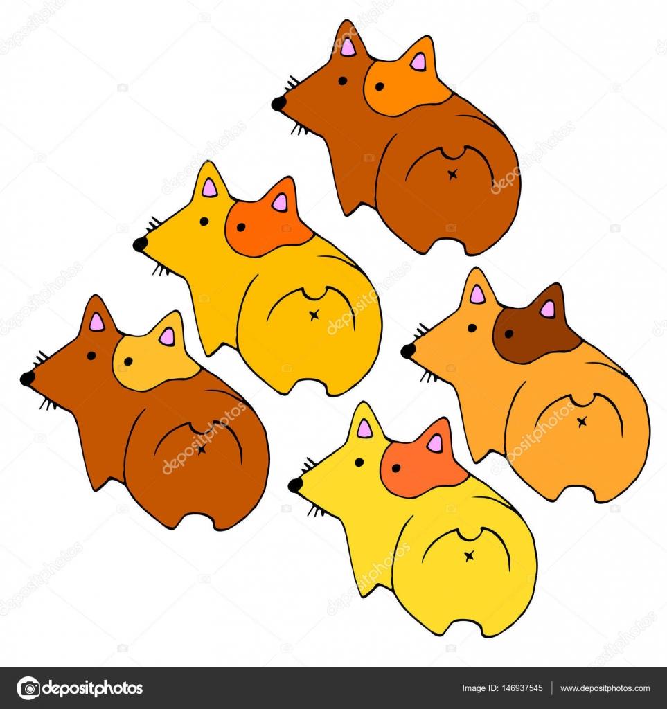 ウェールズ犬動物イラスト ペット耳のベクトル — ストックベクター