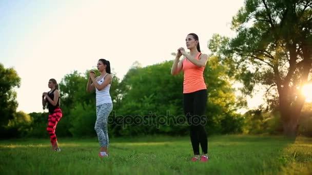 junge und attraktive Frauen bei Fitnessübungen im Park