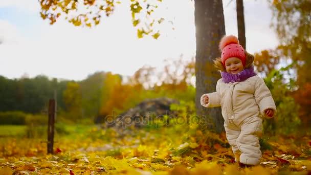 Kislány Őszi ruházat meleg sapka és sál állt a Park nézi a sárga levelek, leesik a fák. Felemeli és elválasztja a levelek a fa.