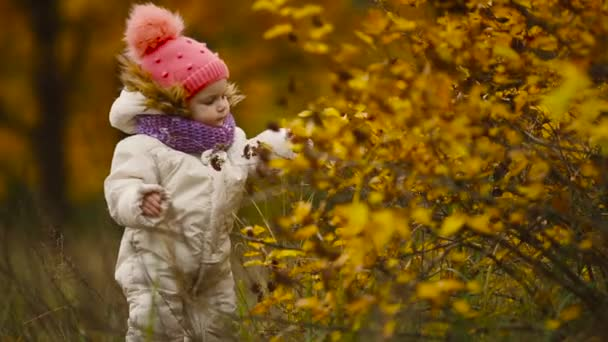 Little girl in autumn clothing in warm hat and scarf standing in the Park watching the yellow leaves falling off the trees. Lifts and separates the leaves from the tree.