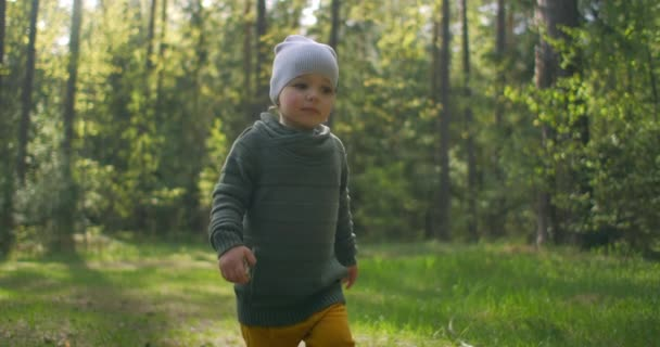 A 2-year-old Caucasian boy walks in slow motion along forest paths in a pine forest. Walks in the Park. Adventures of a young Explorer, explore the world. The camera follows the boy.