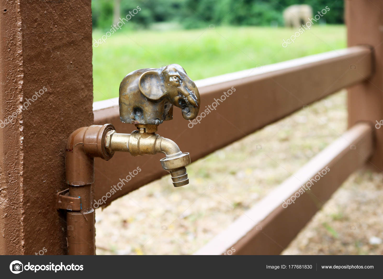 Elephant brass faucet in the garden — Stock Photo © gonnjdi.gmail ...