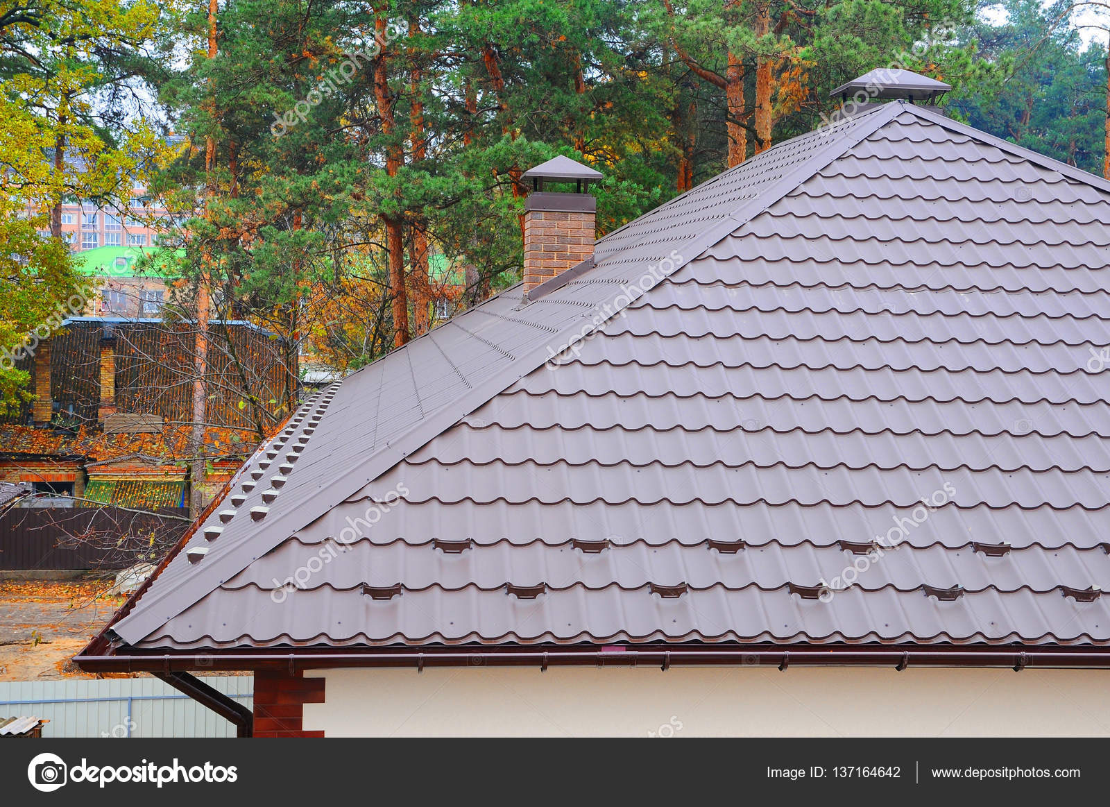 Hood On The Roof Of The Metal Sheets. Roofing Materials. Coaxial Pipe  Heating System