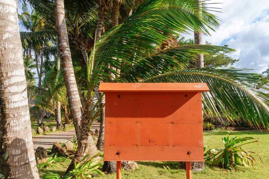 notice board under the palm tree