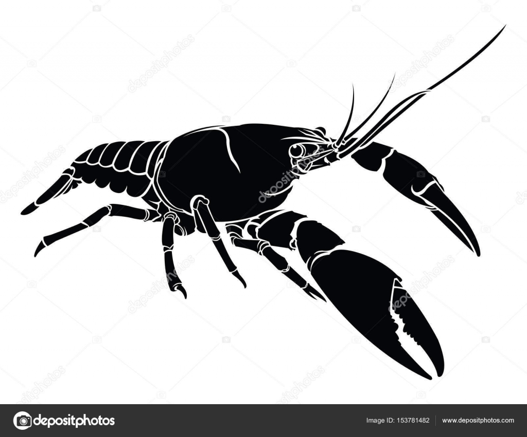 crayfish, lobster vector silhouette isolated. — Stock Vector © lumyaisweet #153781482