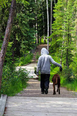 A young boy walking his dog in the forest