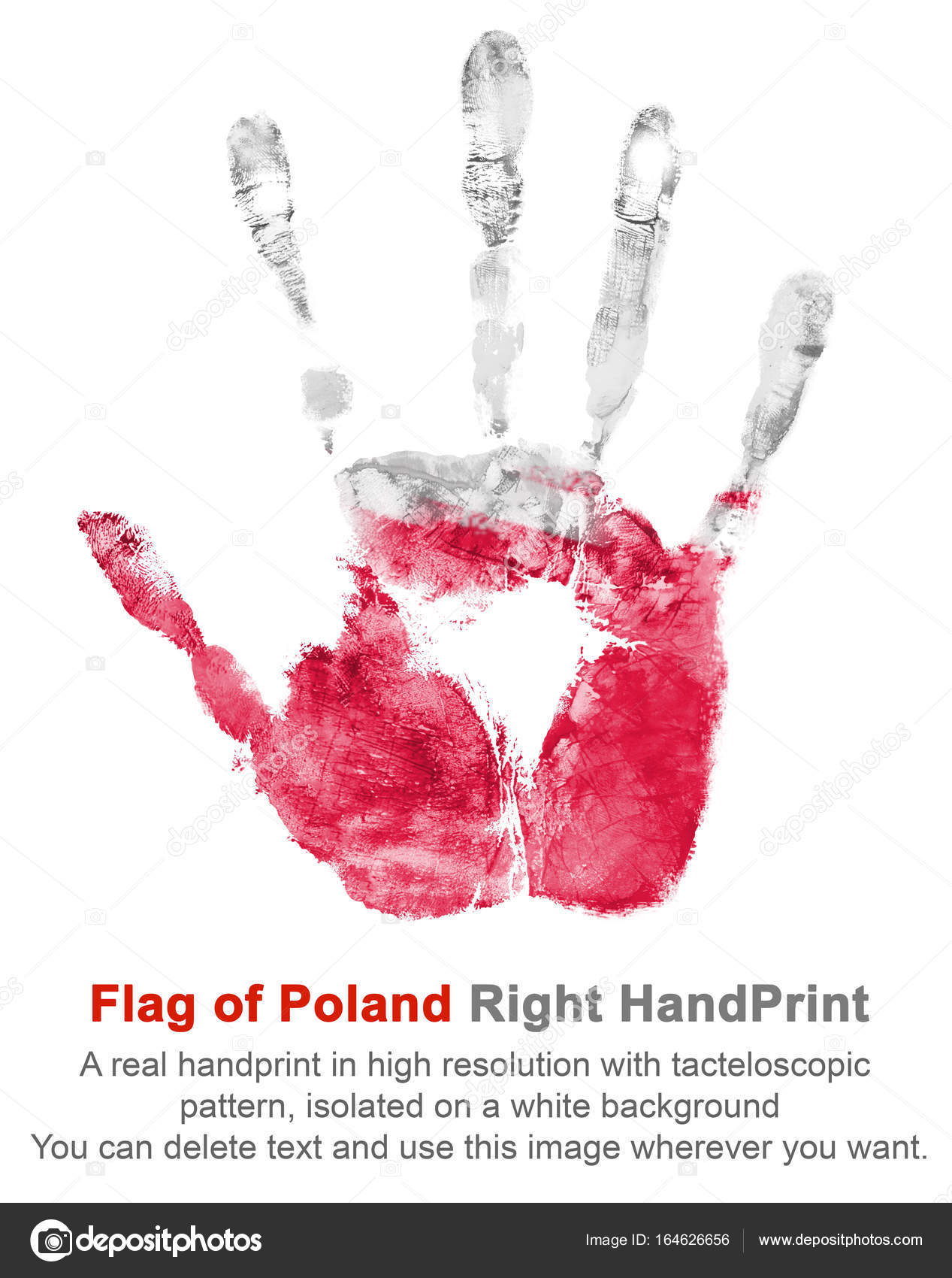 right hand print in poland flag colors on white isolated