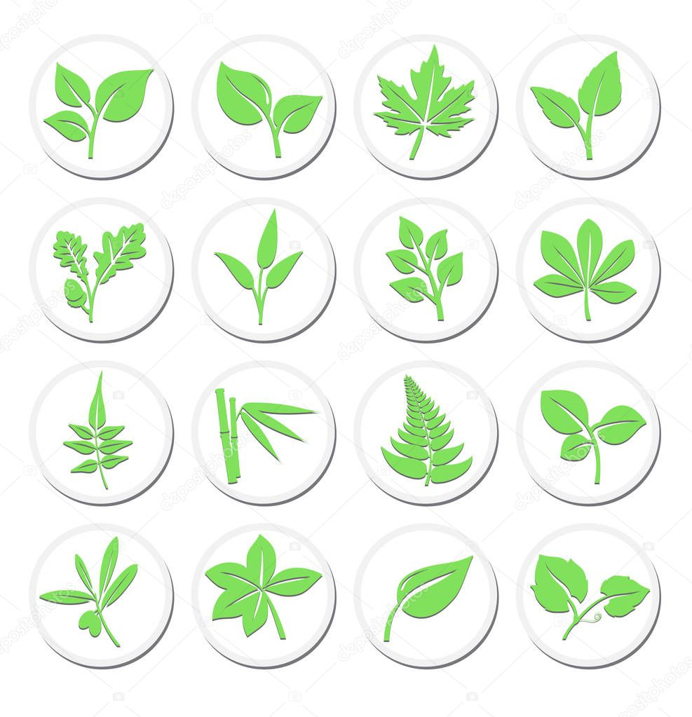Green Leafs Plant Symbols, Stylised Selection Vibrant Leaf Icons