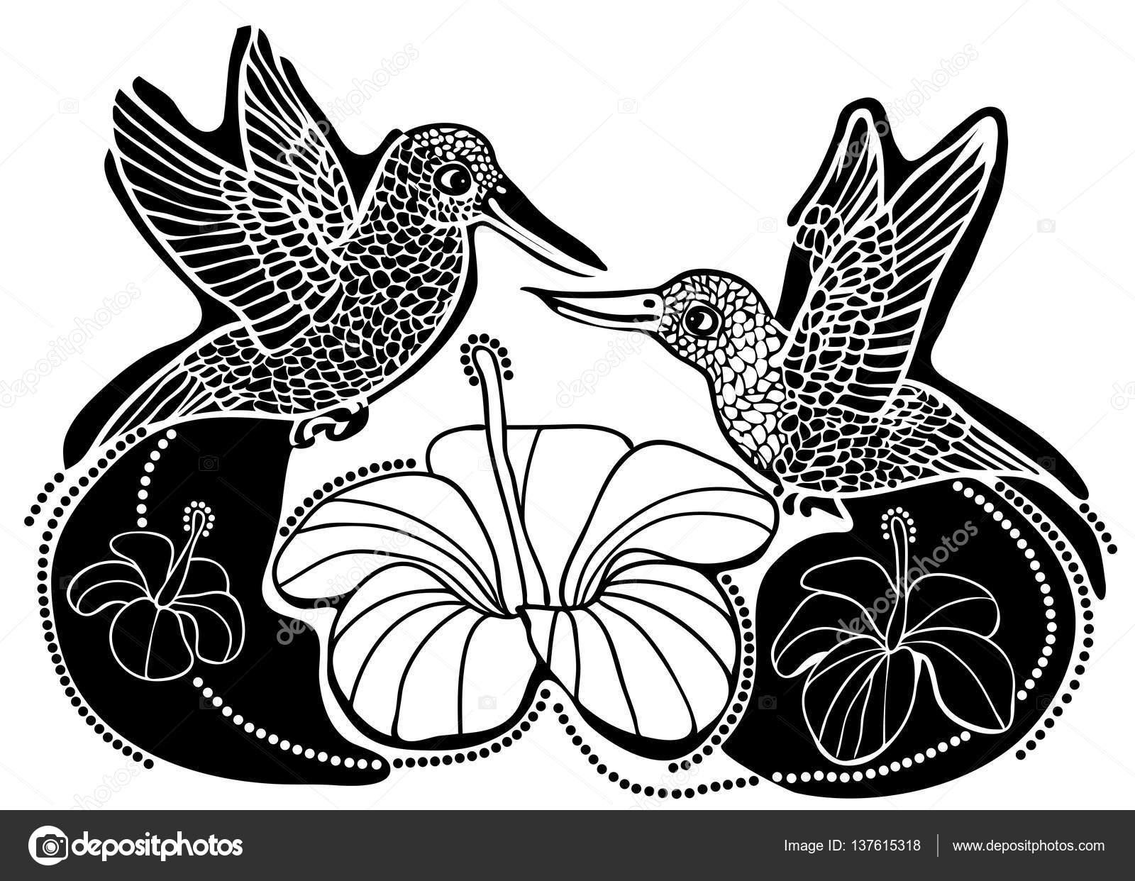 Ilustración De Vector De Colibríes En Amor Y Flores Blanco Y Negro