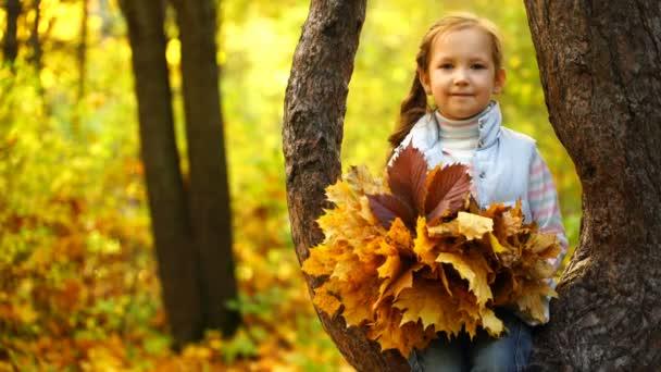 záběry dívka sedí na stromě a držení podzimní listí