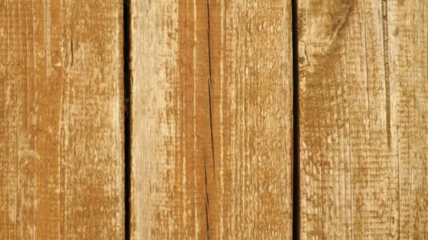 Footage brown wooden texture background