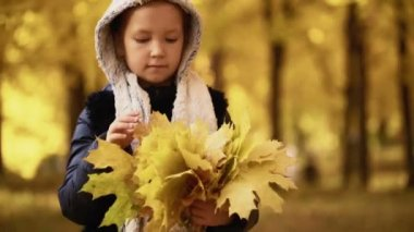 Girl of seven years walks in a park in the fall and holds the leaves in her hands