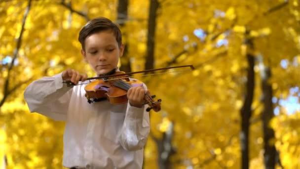 fiatal srác hegedülni az őszi parkban