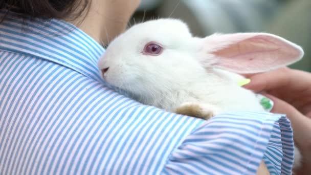 Mädchen hält und streichelt ein Kaninchen