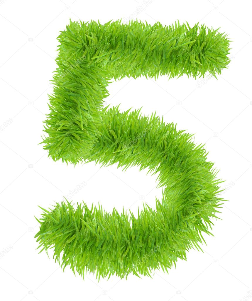 Number Five 5 made of green grass.