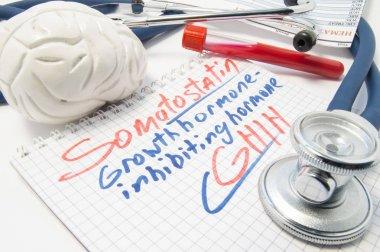 Notebook labeled Somatostatin growth hormone inhibiting hormone (SHIH) next to brain, stethoscope and laboratory blood test tube. Visualization of work, function and analysis of Somatostatin level