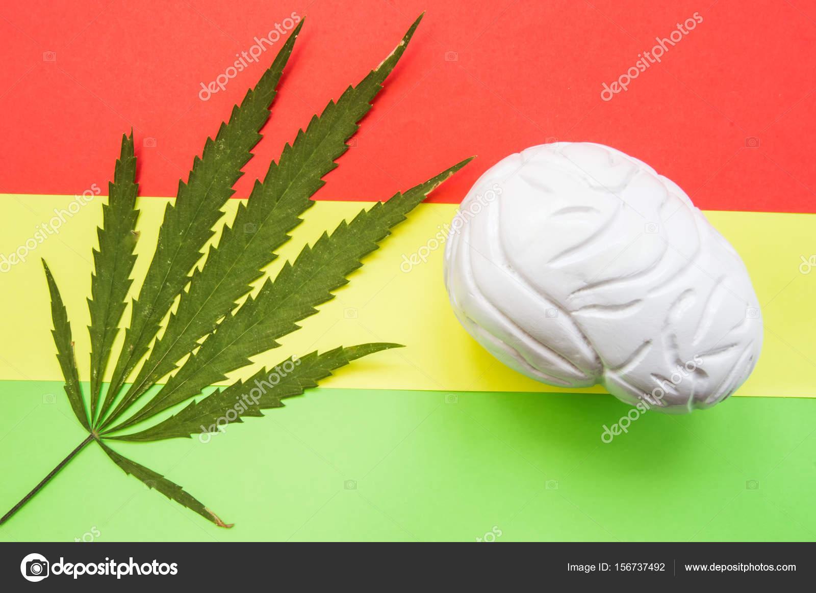 Cannabis medicinal hoja y cerebro anatómica figura sobre fondo Rasta ...