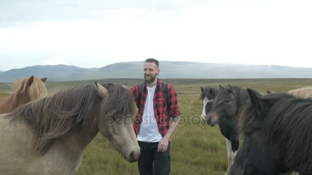 Islandpferde sind ein Hipster, der in Island ein Pferd streichelt. Glücklich lächelnd mit einem Pferd in schöner Natur in Island.