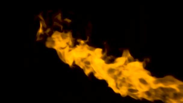 oheň plameny na černém pozadí