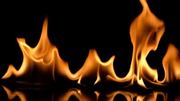 Palbu plameny abstraktní na černém pozadí. Zpomalený pohyb