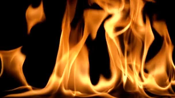 Pomalý pohyb čistého ohně, vznícení a hoření. Na černém pozadí je rozsvícena řada skutečných plamenů. Skutečné snímky.