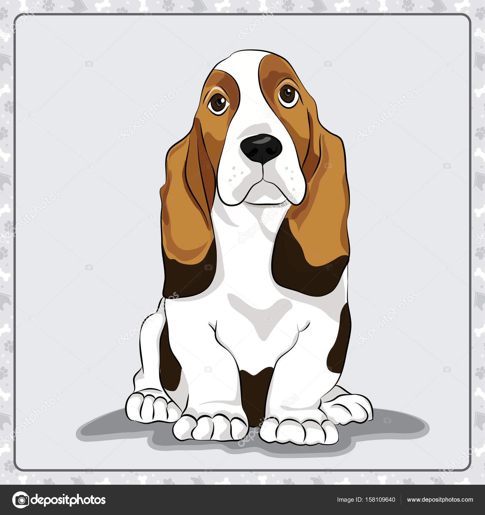 Ilustración De Perro Basset Hound Ilustración De Dibujos Animados