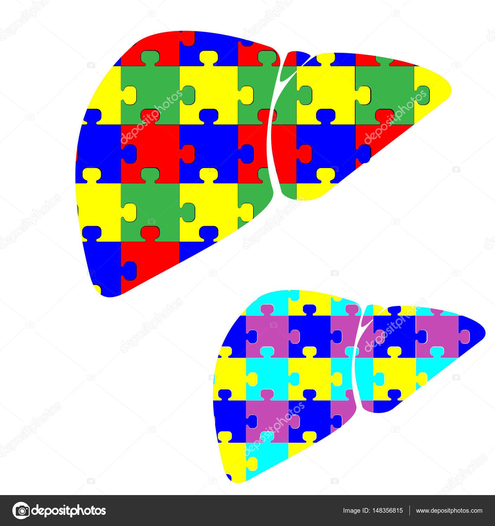Hepar hígado con rompecabezas de color — Archivo Imágenes ...