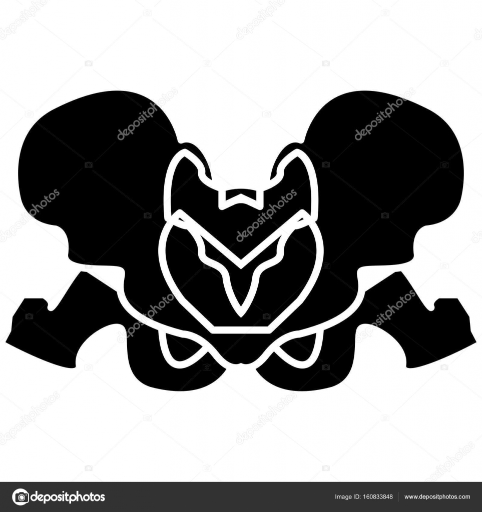 Icono de color negro esqueleto de la pelvis — Vector de stock ...