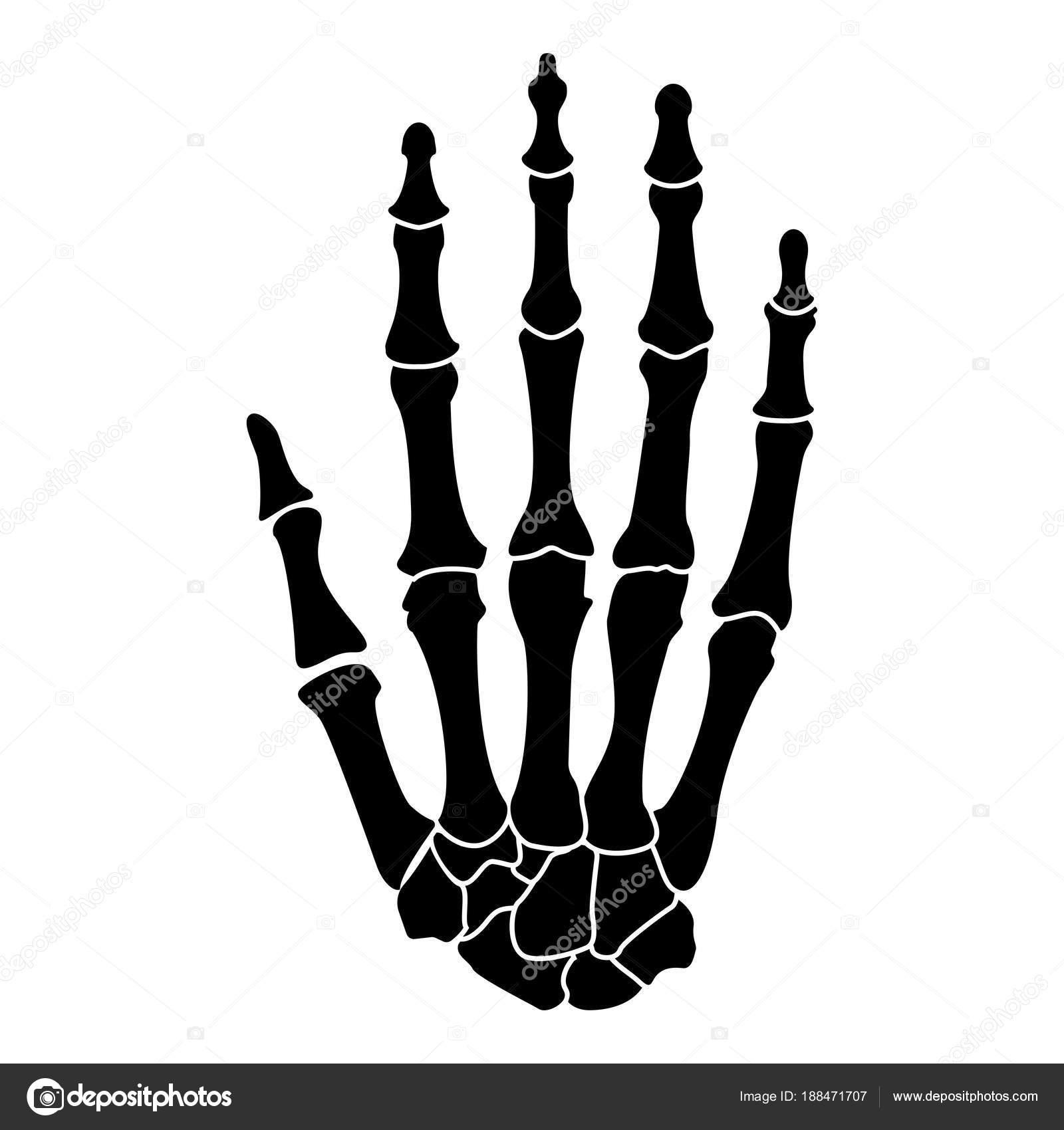 Hand Knochen schwarz Abbildung flachen Stil einfach Symbolbild ...