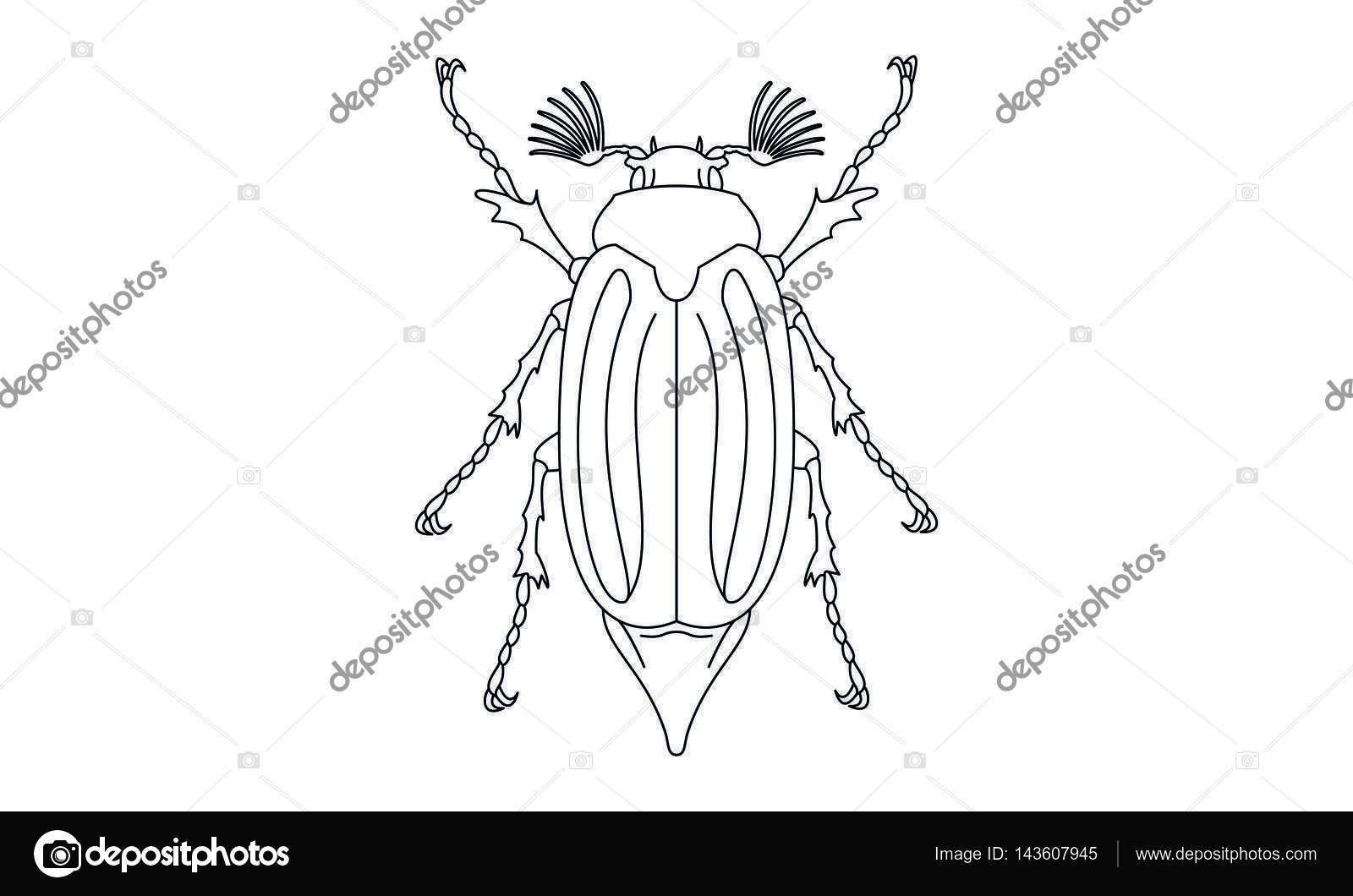 Pictograma - abejorro abejorro, Maybug, escarabajo de mayo, Bug ...