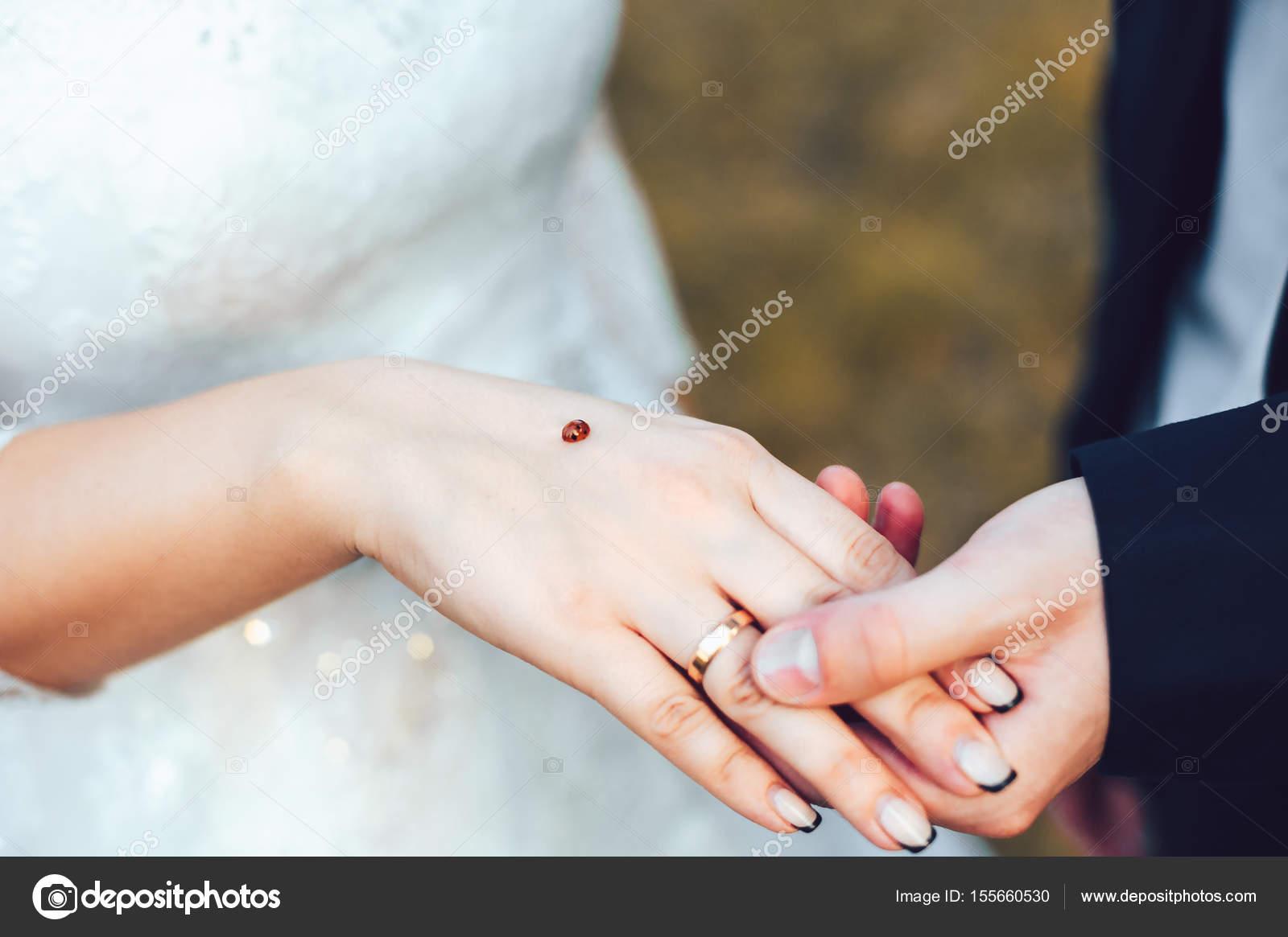 Mariquita en manos de la novia y el novio. Mantenga las manos ...