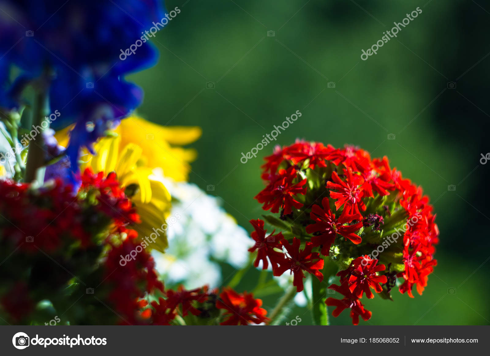 A bouquet of bright spring flowers of various types stock photo a bouquet of bright spring flowers of various types stock photo mightylinksfo