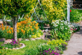 Fotografie Beautiful Home garden Allotment in spring
