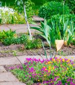 Krásný domov zahrada plnění na jaře