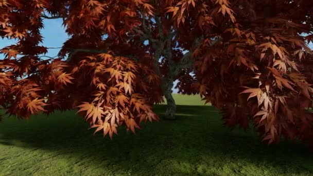 Kaštanové listy stromů na větvích stromů