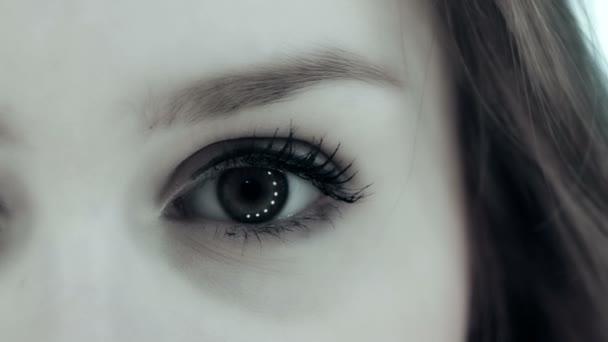 Ojos Hermosos En Blanco Y Negro Vídeos De Stock Mcade 135550052