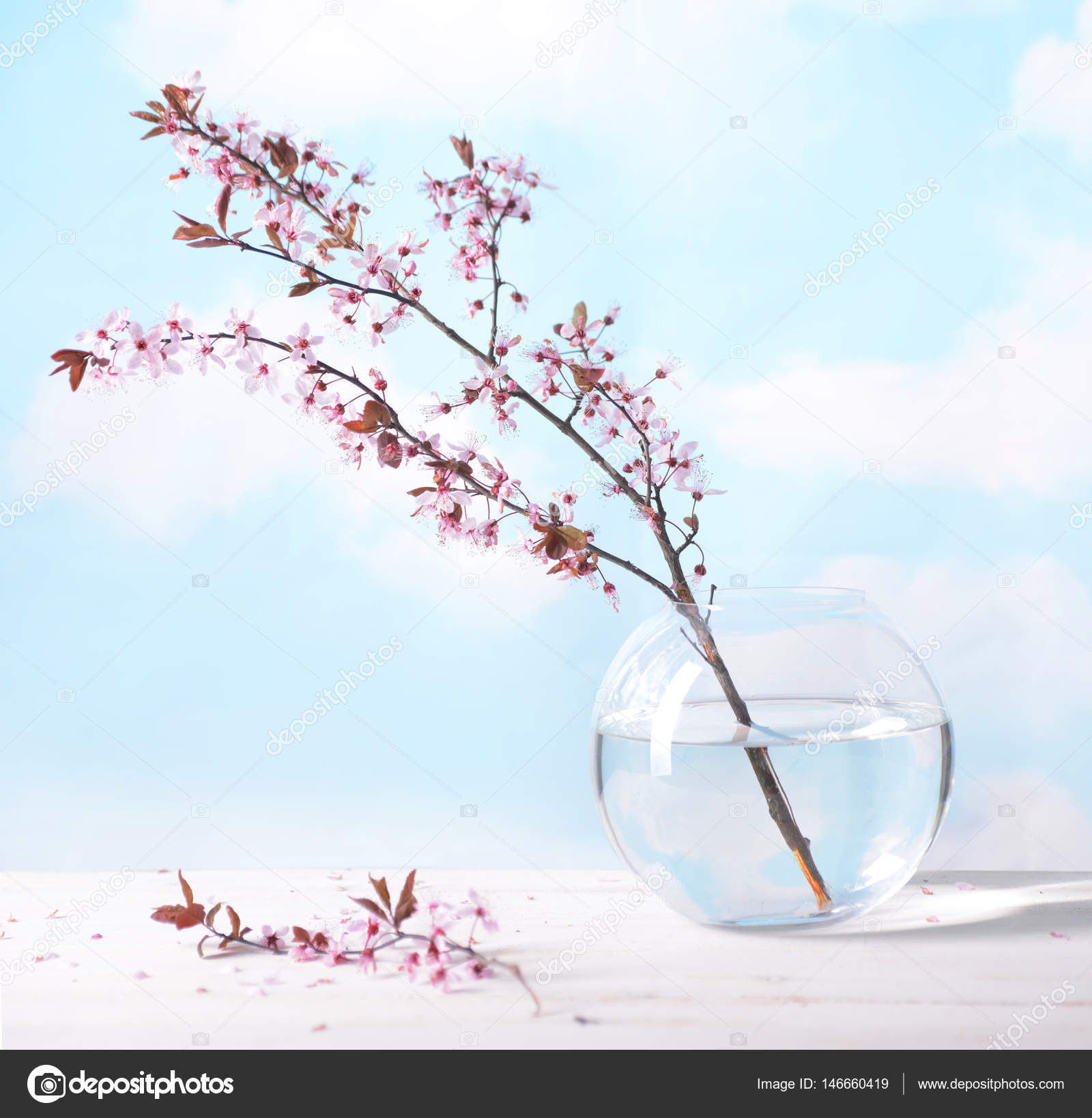 Branch With Pink Flowers Glass Vaseagainst The Blue Sky And White
