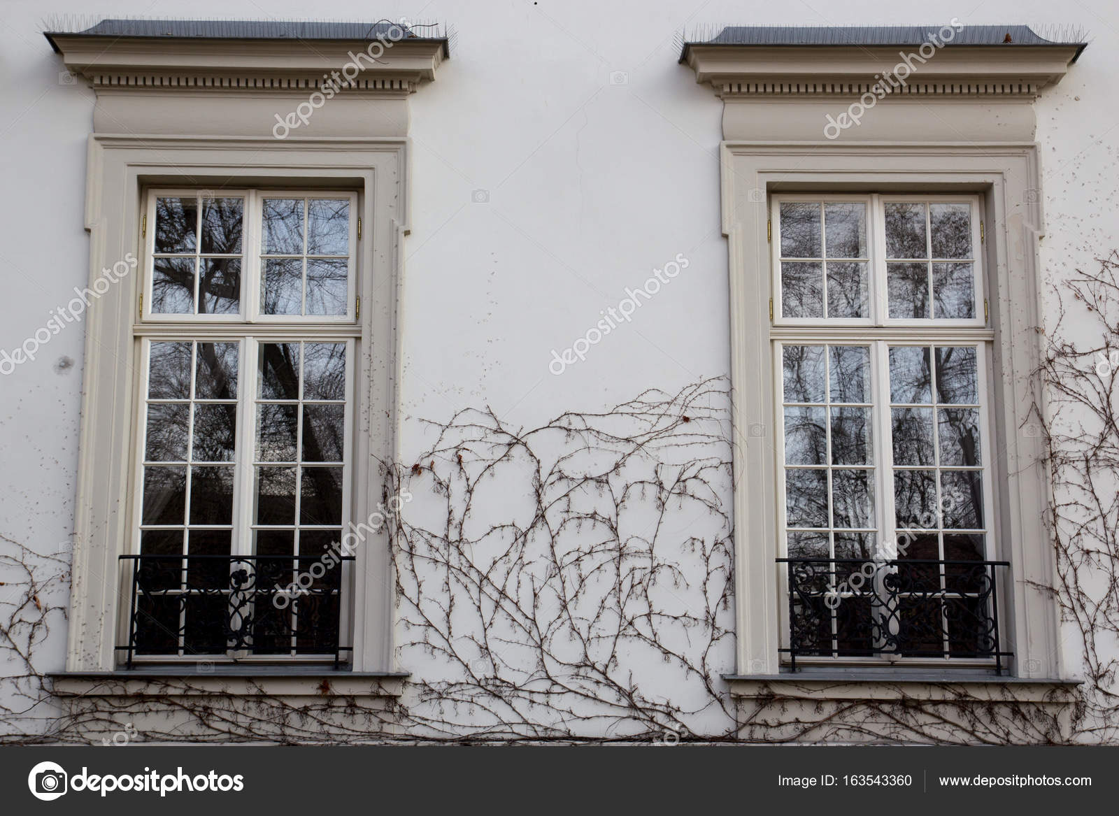 Two vintage design windows on the facade of the old house