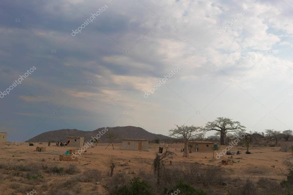 small African village with imbondeiros. Angola.