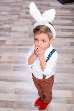 Little boy in bunny ears