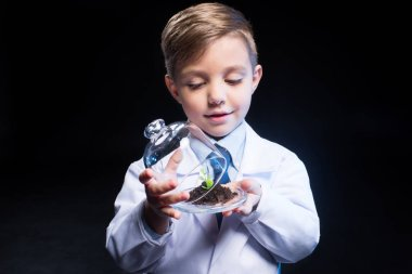 Little boy holding plant