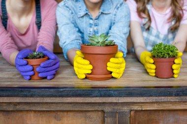 women with plants in flowerpots