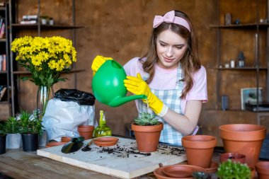 Young woman in rubber gloves watering plant in flowerpot stock vector
