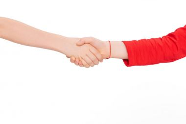 Close up shaking hands isolated on white stock vector