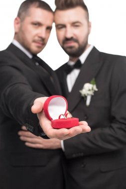 homosexual couple showing wedding rings