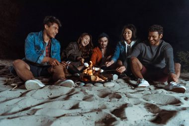 multiethnic friends roasting marshmallows on bonfire