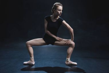 ballerina in pointe and leotard