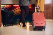 Fotografie low section of mature couple with suitcases standing at reception in hotel