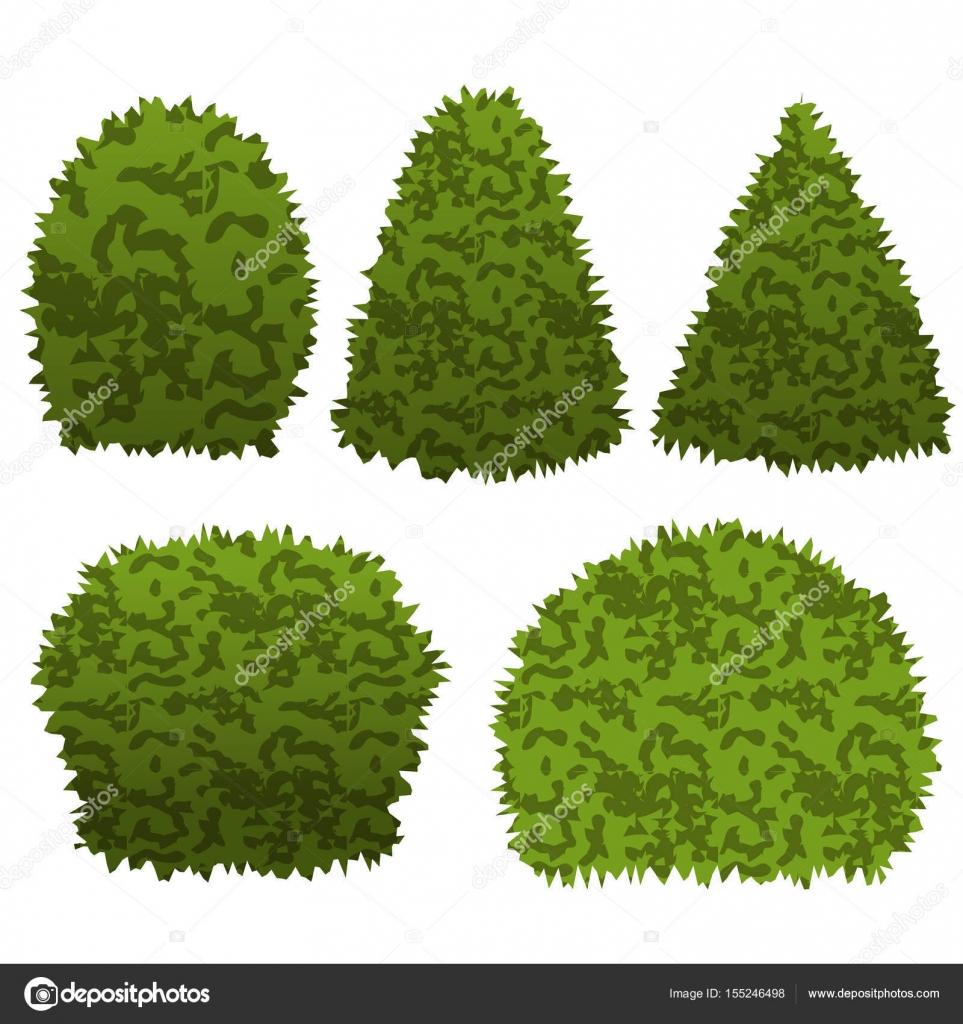 Set da giardino cespugli per topiaria scena del giardino for Cespugli giardino