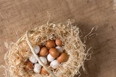 Fotografie Chicken eggs in basket